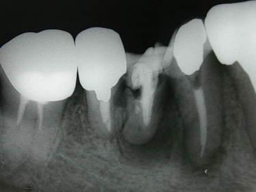 DSCN0408